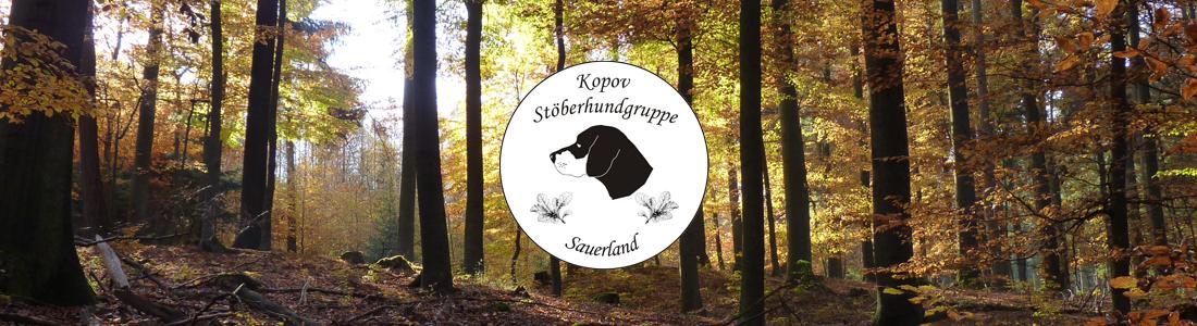 Kopov-Stöberhundgruppe